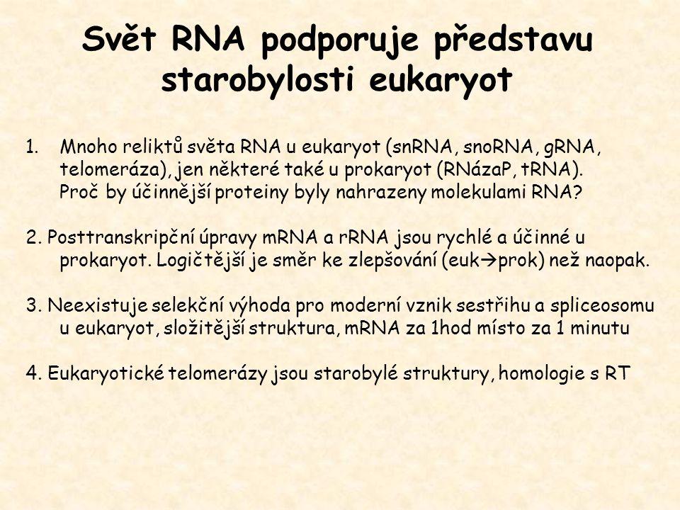 Svět RNA podporuje představu starobylosti eukaryot 1.Mnoho reliktů světa RNA u eukaryot (snRNA, snoRNA, gRNA, telomeráza), jen některé také u prokaryo