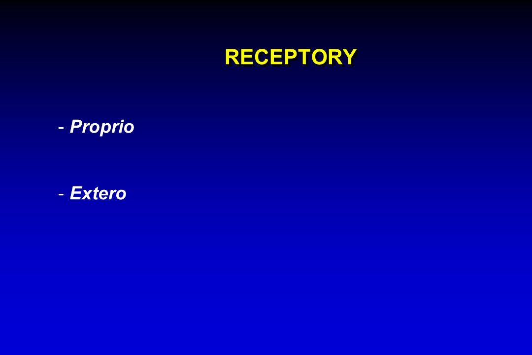RECEPTORY - Proprio - Extero