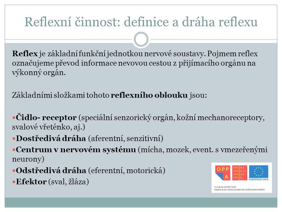Reflexní činnost: rozdělení reflexů Reflexy dělíme podle různých hledisek, a to podle: Typu receptoru (entero-, proprio-, exteroreceptivní) Počtu synapsí (mono-, polysynaptické) Efektoru (somatické, autonomní) Místa centrální prezentace (spinální, bulbární, mozečkové, atd.), Vzniku (podmíněné, nepodmíněné) Fyziologické přítomnosti (fyziologické, patologické, patologicky změněné fyziologické reflexy)
