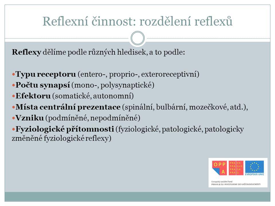 Reflexní činnost: rozdělení reflexů Reflexy dělíme podle různých hledisek, a to podle: Typu receptoru (entero-, proprio-, exteroreceptivní) Počtu syna