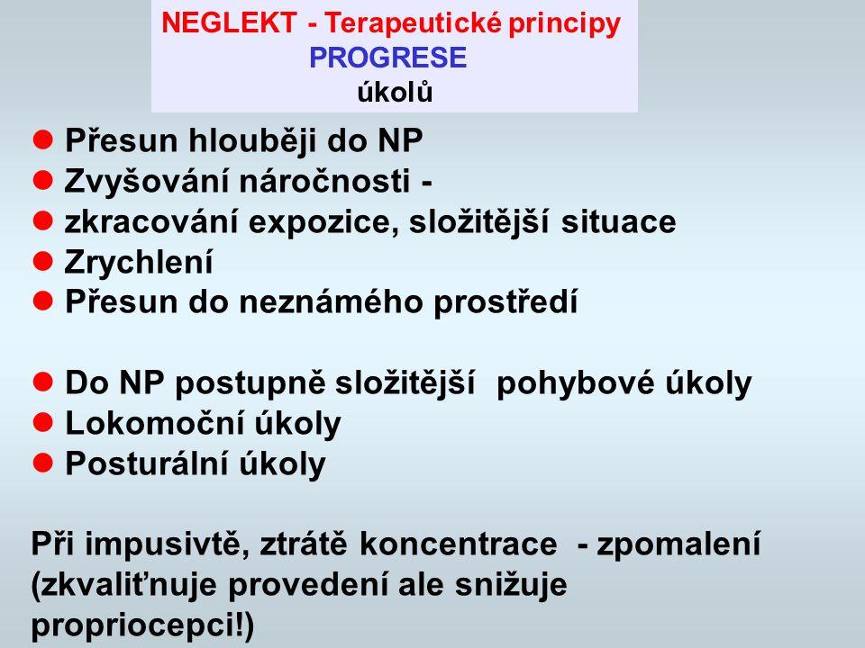 """Co nejvíce podnětů v NP Co nejmenší stimulace na straně """"zdravé Propojování visuálních, taktilních, proprioceptivních a zvukových stimulů Kombinace aktivních a pasivních prvků (důraz na aktivitu) Přenášení pozornosti, pohybu a celkové aktivity do NP Visual cues (obraz za dveřmi apod.) NEGLEKT Terapeutické principy"""