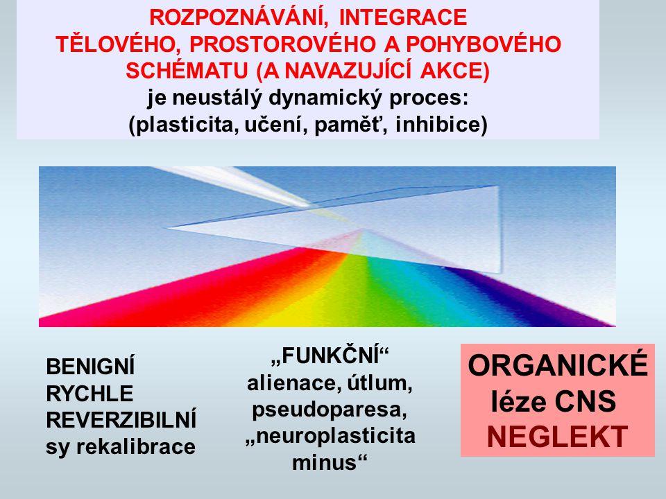 """ROZPOZNÁVÁNÍ, INTEGRACE TĚLOVÉHO, PROSTOROVÉHO A POHYBOVÉHO SCHÉMATU (A NAVAZUJÍCÍ AKCE) je neustálý dynamický proces: (plasticita, učení, paměť, inhibice) BENIGNÍ RYCHLE REVERZIBILNÍ sy rekalibrace """"FUNKČNÍ alienace, útlum, pseudoparesa, """"neuroplasticita minus ORGANICKÉ léze CNS NEGLEKT"""