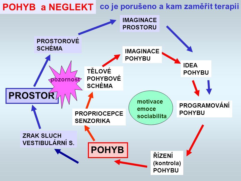 NEGLEKT - Terapeutické principy PROGRESE úkolů Přesun hlouběji do NP Zvyšování náročnosti - zkracování expozice, složitější situace Zrychlení Přesun do neznámého prostředí Do NP postupně složitější pohybové úkoly Lokomoční úkoly Posturální úkoly Při impusivtě, ztrátě koncentrace - zpomalení (zkvaliťnuje provedení ale snižuje propriocepci!)