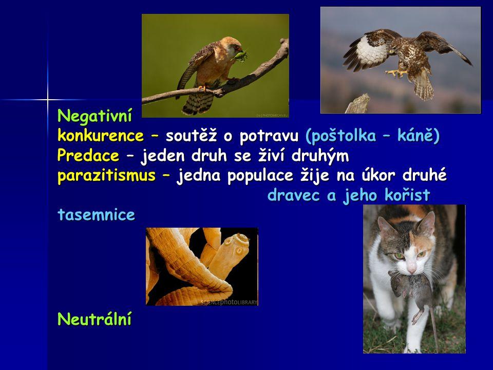 Negativní konkurence – soutěž o potravu (poštolka – káně) Predace – jeden druh se živí druhým parazitismus – jedna populace žije na úkor druhé dravec