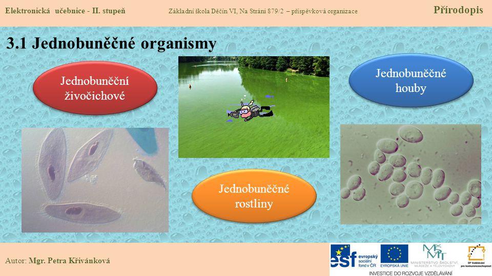 3.1 Jednobuněčné organismy Elektronická učebnice - II.