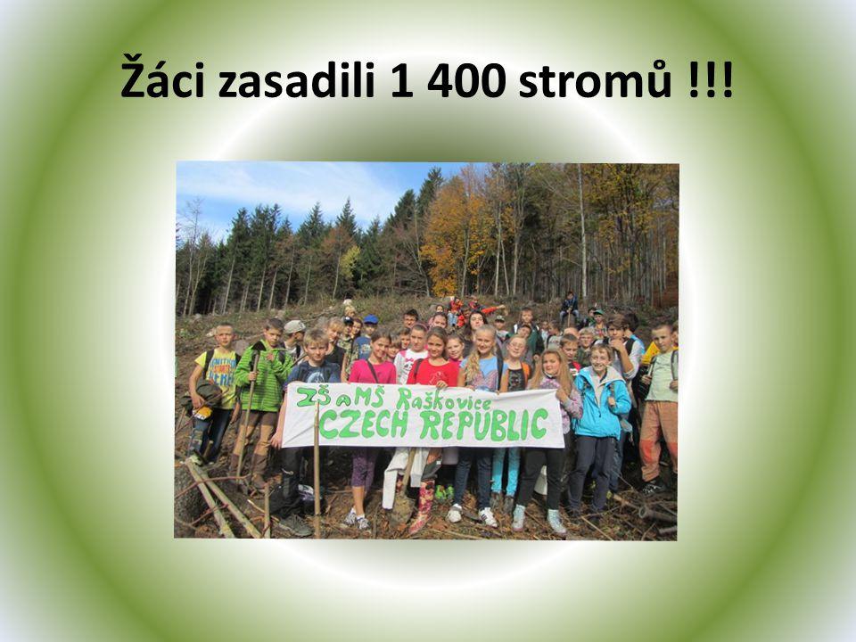 Žáci zasadili 1 400 stromů !!!