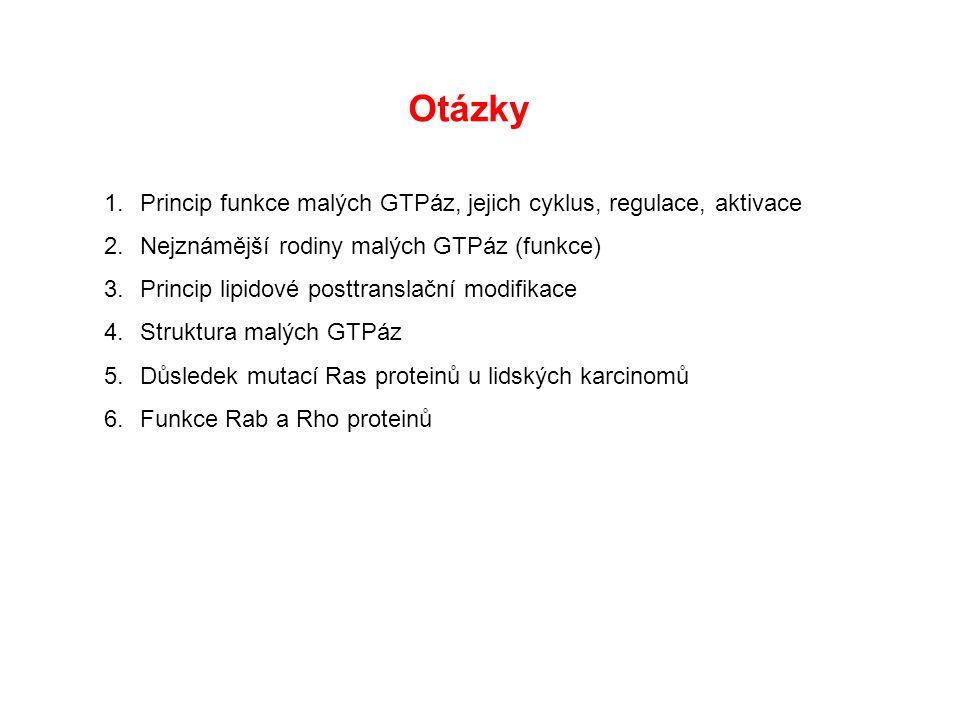 Otázky 1.Princip funkce malých GTPáz, jejich cyklus, regulace, aktivace 2.Nejznámější rodiny malých GTPáz (funkce) 3.Princip lipidové posttranslační modifikace 4.Struktura malých GTPáz 5.Důsledek mutací Ras proteinů u lidských karcinomů 6.Funkce Rab a Rho proteinů