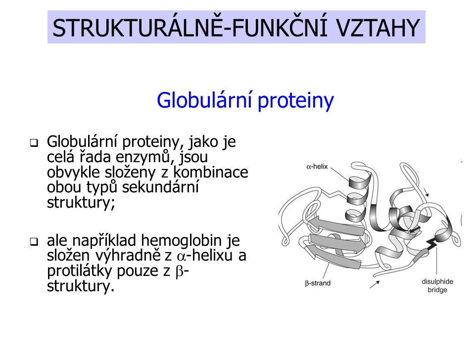  Globulární proteiny, jako je celá řada enzymů, jsou obvykle složeny z kombinace obou typů sekundární struktury;  ale například hemoglobin je složen výhradně z  -helixu a protilátky pouze z  - struktury.