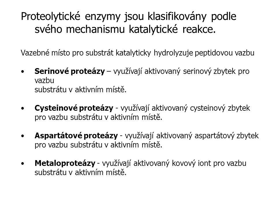 Proteolytické enzymy Proteolytické enzymy jsou klasifikovány podle svého mechanismu katalytické reakce.
