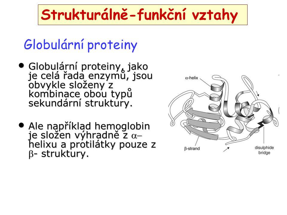 Globulární proteiny, jako je celá řada enzymů, jsou obvykle složeny z kombinace obou typů sekundární struktury. Globulární proteiny, jako je celá řada