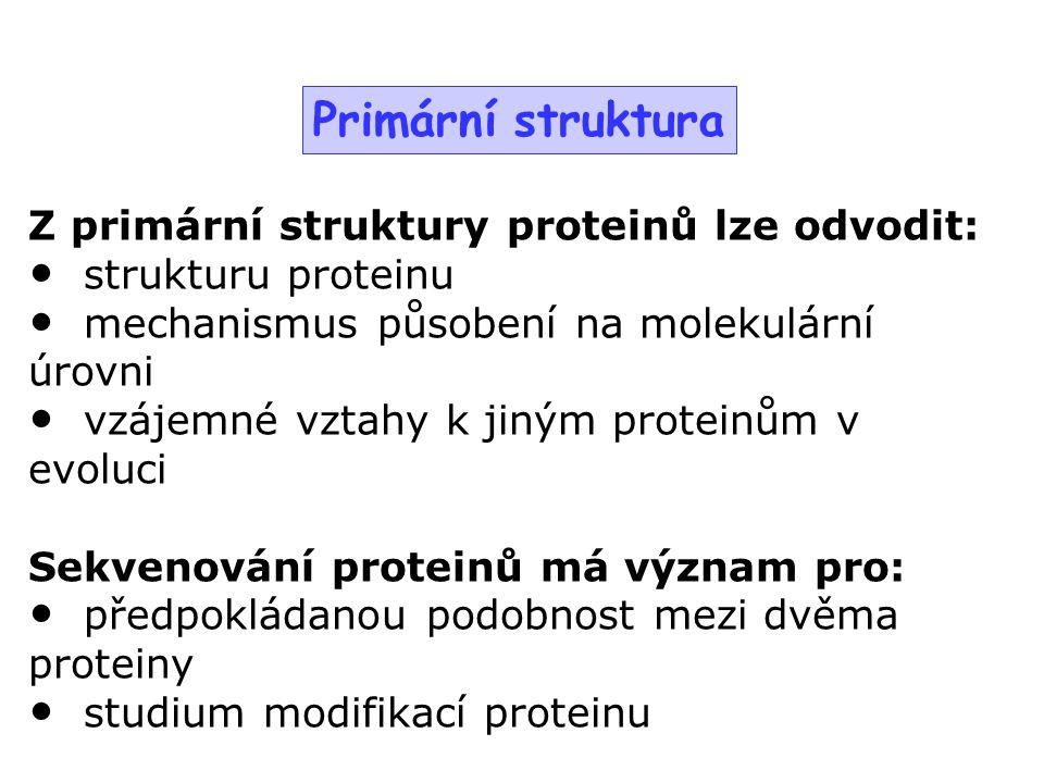 Z primární struktury proteinů lze odvodit: strukturu proteinu mechanismus působení na molekulární úrovni vzájemné vztahy k jiným proteinům v evoluci S