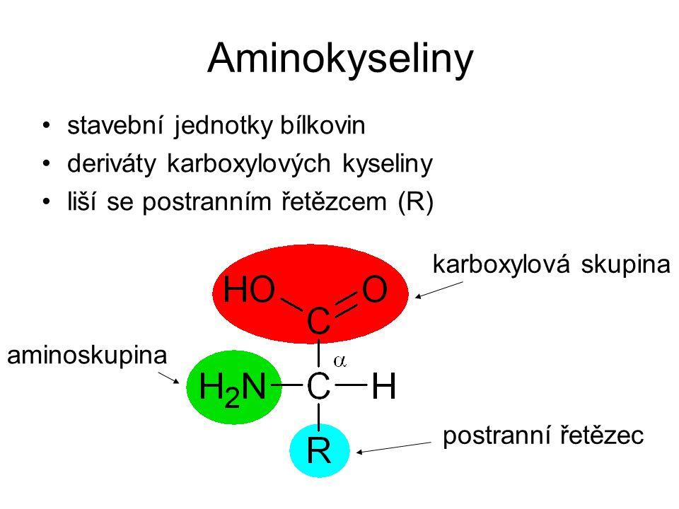 Aminokyseliny stavební jednotky bílkovin deriváty karboxylových kyseliny liší se postranním řetězcem (R) postranní řetězec aminoskupina karboxylová sk