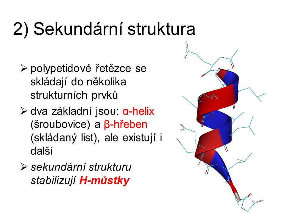 2) Sekundární struktura  polypetidové řetězce se skládají do několika strukturních prvků α-helix β-hřeben  dva základní jsou: α-helix (šroubovice) a