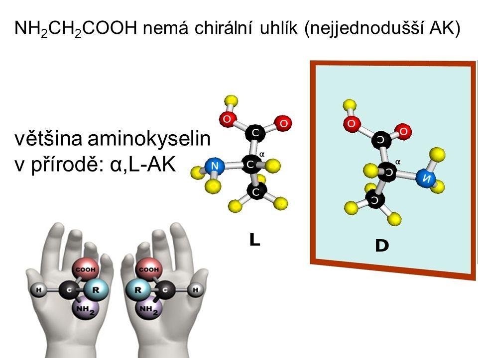 NH 2 CH 2 COOH nemá chirální uhlík (nejjednodušší AK) většina aminokyselin v přírodě: α,L-AK