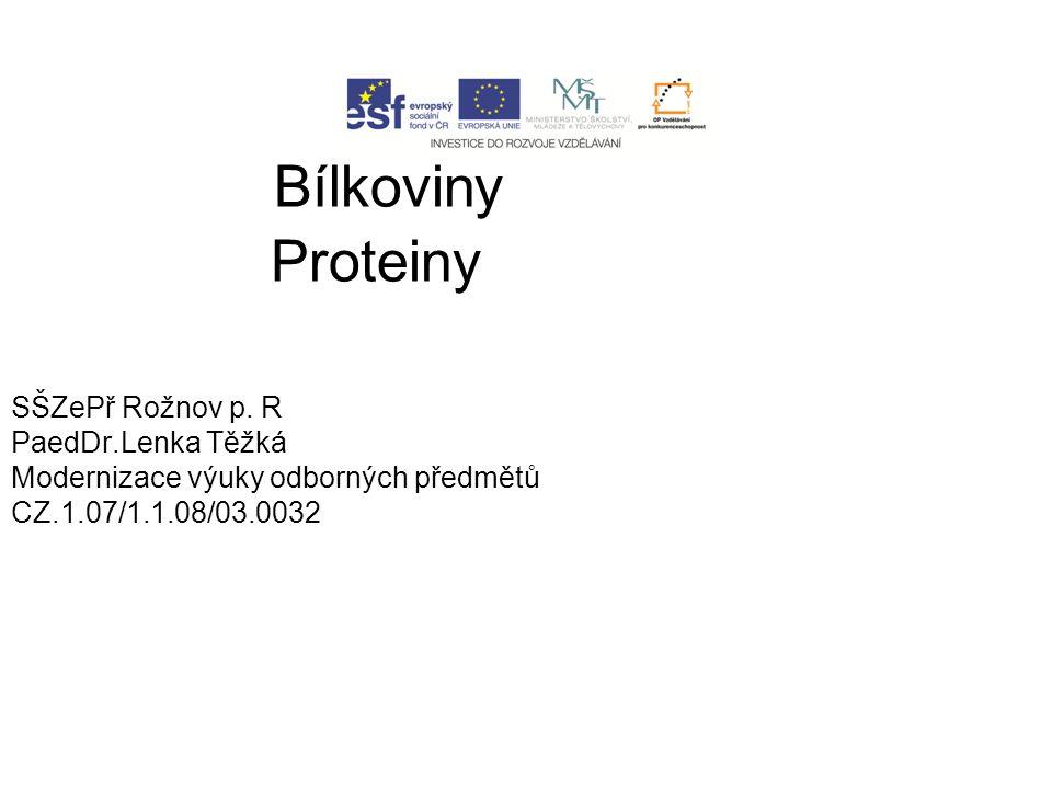 Makromolekukární přírodní látky Délka 200 - 1000 aminokyselin Základní složka svalové hmoty Propojeny peptidickou vazbou 20 proteinogenních bílkovin z toho 8 esenciálních