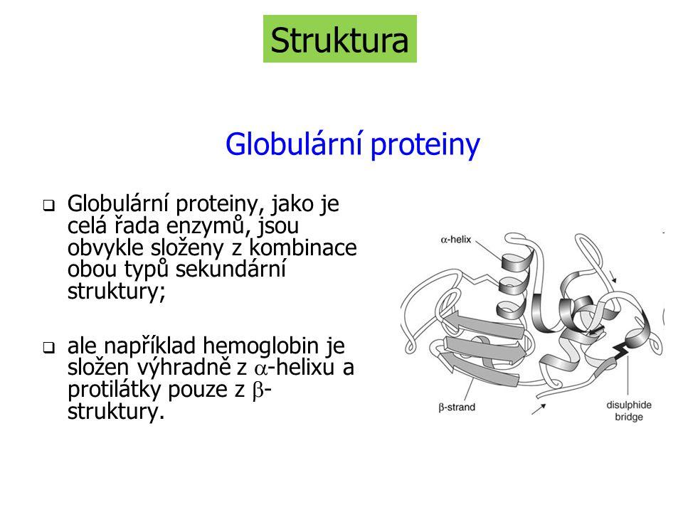  Globulární proteiny, jako je celá řada enzymů, jsou obvykle složeny z kombinace obou typů sekundární struktury;  ale například hemoglobin je složen