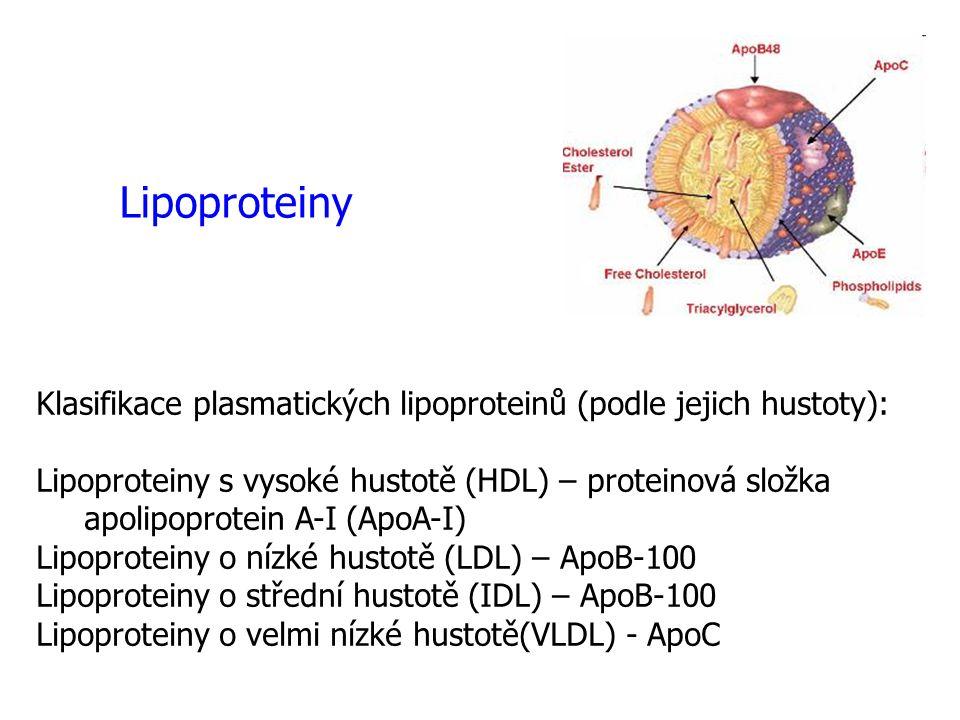 Klasifikace plasmatických lipoproteinů (podle jejich hustoty): Lipoproteiny s vysoké hustotě (HDL) – proteinová složka apolipoprotein A-I (ApoA-I) Lip