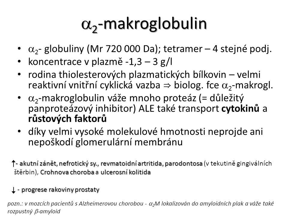  2 -makroglobulin  2 - globuliny (Mr 720 000 Da); tetramer – 4 stejné podj. koncentrace v plazmě -1,3 – 3 g/l rodina thiolesterových plazmatických b