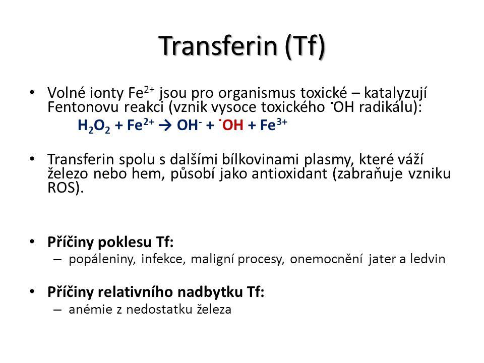 Transferin (Tf) Volné ionty Fe 2+ jsou pro organismus toxické – katalyzují Fentonovu reakci (vznik vysoce toxického  OH radikálu): H 2 O 2 + Fe 2+ →