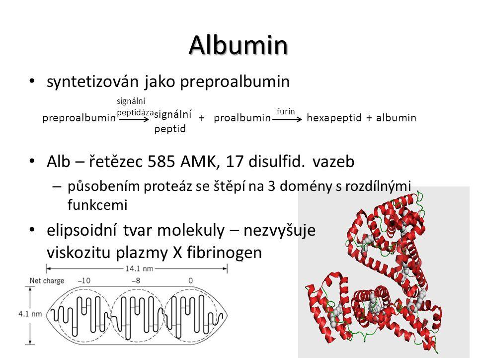 syntetizován jako preproalbumin Alb – řetězec 585 AMK, 17 disulfid. vazeb – působením proteáz se štěpí na 3 domény s rozdílnými funkcemi elipsoidní tv