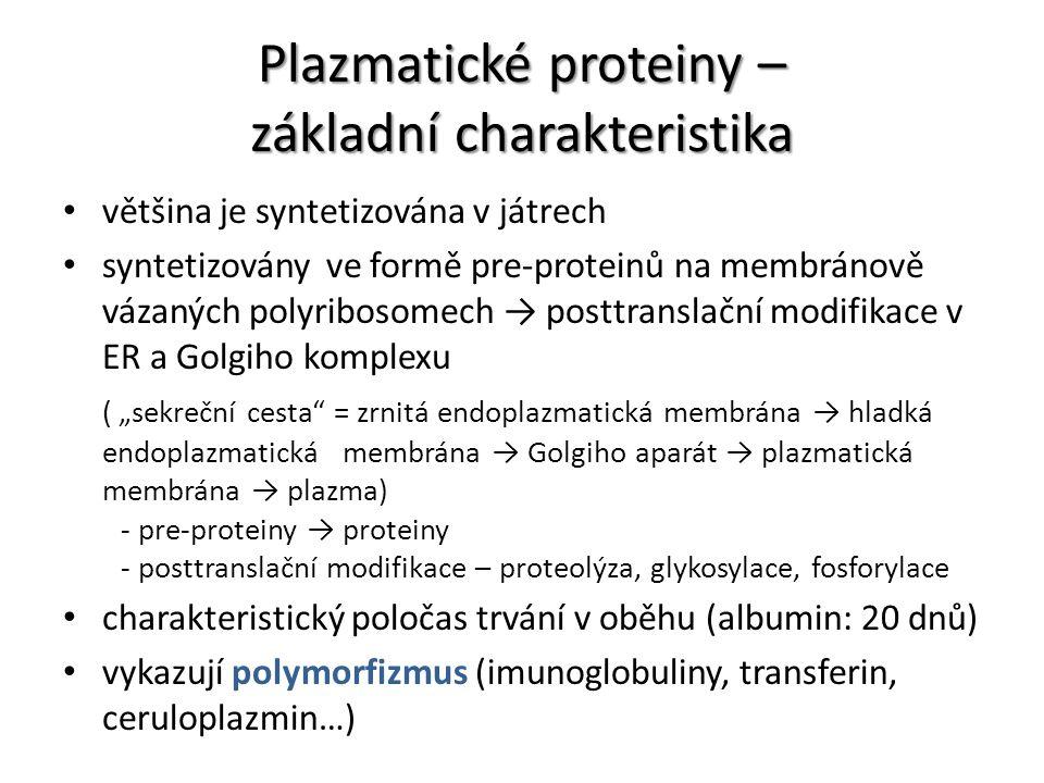 Plazmatické proteiny – základní charakteristika většina je syntetizována v játrech syntetizovány ve formě pre-proteinů na membránově vázaných polyribo