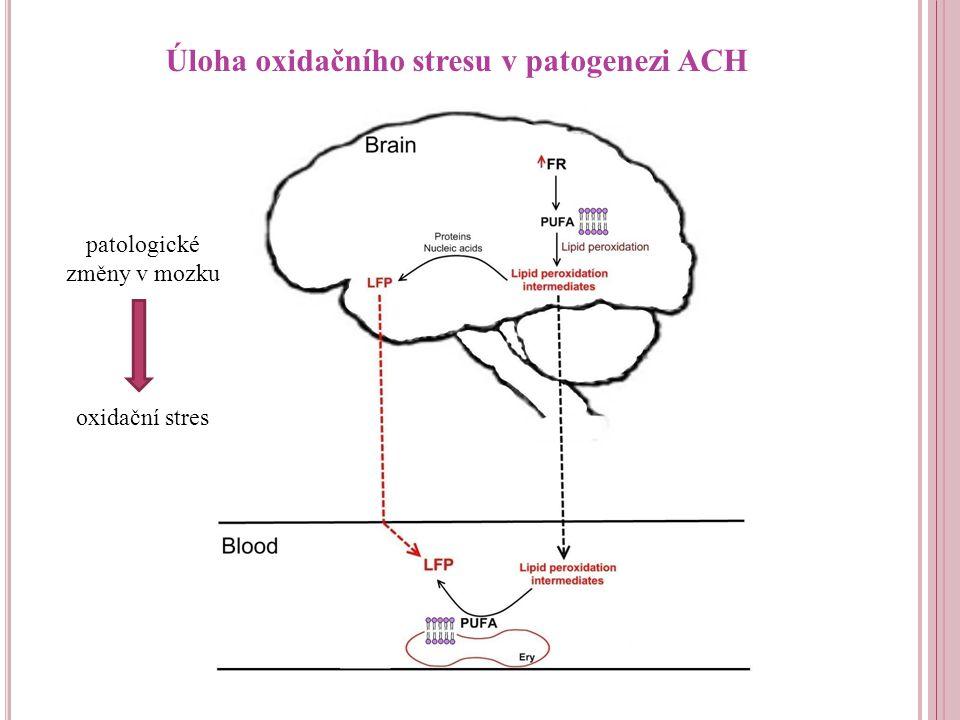 patologické změny v mozku oxidační stres Úloha oxidačního stresu v patogenezi ACH