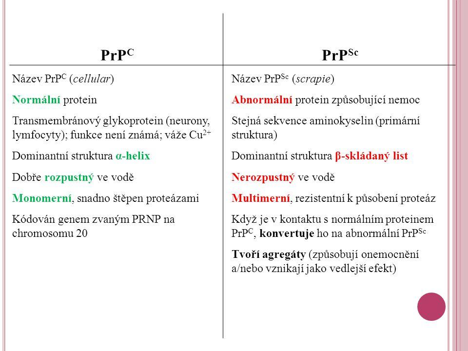 PrP C Název PrP C (cellular) Normální protein Transmembránový glykoprotein (neurony, lymfocyty); funkce není známá; váže Cu 2+ Dominantní struktura α-helix Dobře rozpustný ve vodě Monomerní, snadno štěpen proteázami Kódován genem zvaným PRNP na chromosomu 20 PrP Sc Název PrP Sc (scrapie) Abnormální protein způsobující nemoc Stejná sekvence aminokyselin (primární struktura) Dominantní struktura β-skládaný list Nerozpustný ve vodě Multimerní, rezistentní k působení proteáz Když je v kontaktu s normálním proteinem PrP C, konvertuje ho na abnormální PrP Sc Tvoří agregáty (způsobují onemocnění a/nebo vznikají jako vedlejší efekt)