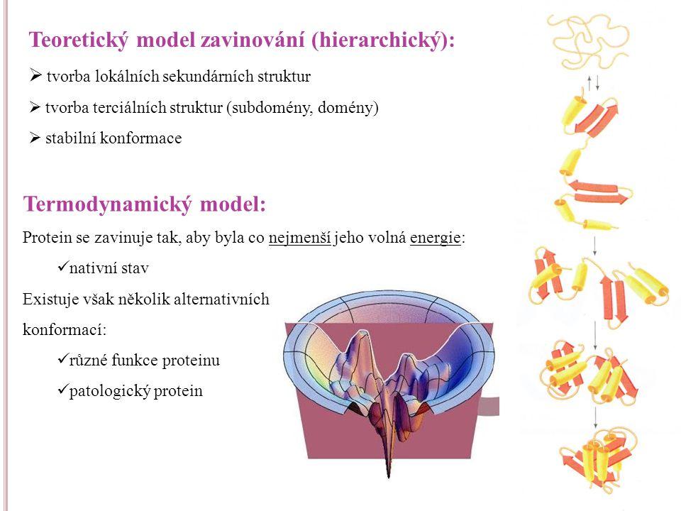 Abnormální terciální struktura specifického proteinu způsobí patologickou konformaci α-helix β-skládaný list Normální protein (nativní struktura) Protein způsobující onemocnění (patologická konformace) konformační změna Agregace Toxická aktivita Neurodegenerativní choroby Ztráta funkce