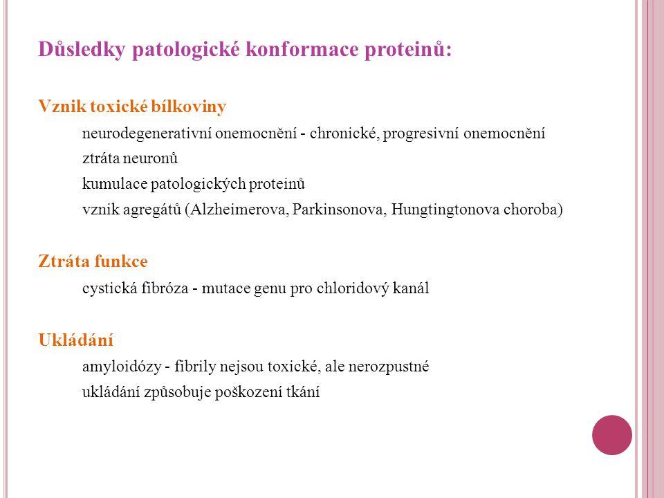Důsledky patologické konformace proteinů: Vznik toxické bílkoviny neurodegenerativní onemocnění - chronické, progresivní onemocnění ztráta neuronů kumulace patologických proteinů vznik agregátů (Alzheimerova, Parkinsonova, Hungtingtonova choroba) Ztráta funkce cystická fibróza - mutace genu pro chloridový kanál Ukládání amyloidózy - fibrily nejsou toxické, ale nerozpustné ukládání způsobuje poškození tkání