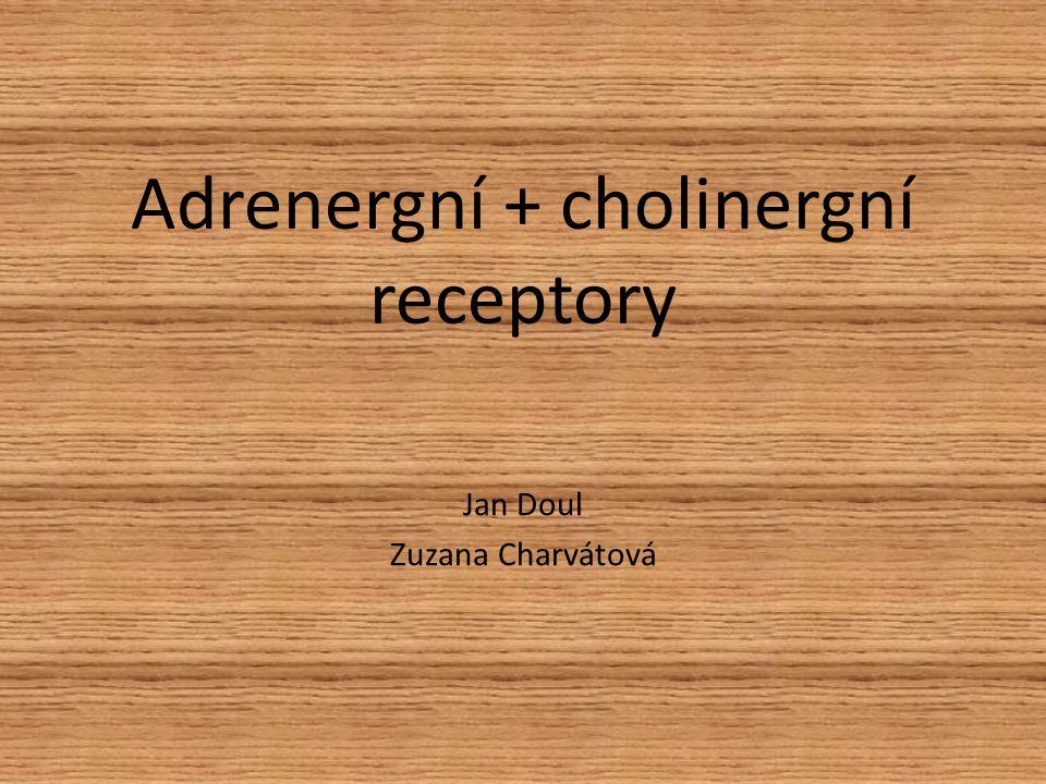 Adrenergní + cholinergní receptory Jan Doul Zuzana Charvátová