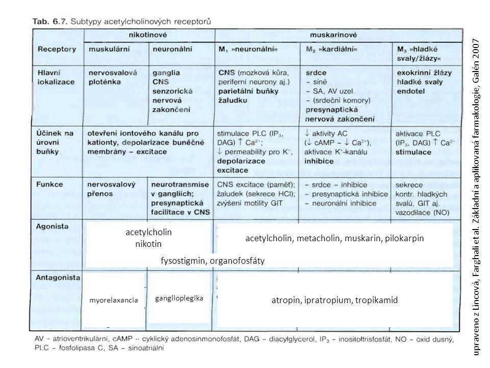 acetylcholin nikotin ganglioplegika myorelaxancia acetylcholin, metacholin, muskarin, pilokarpin atropin, ipratropium, tropikamid fysostigmin, organof