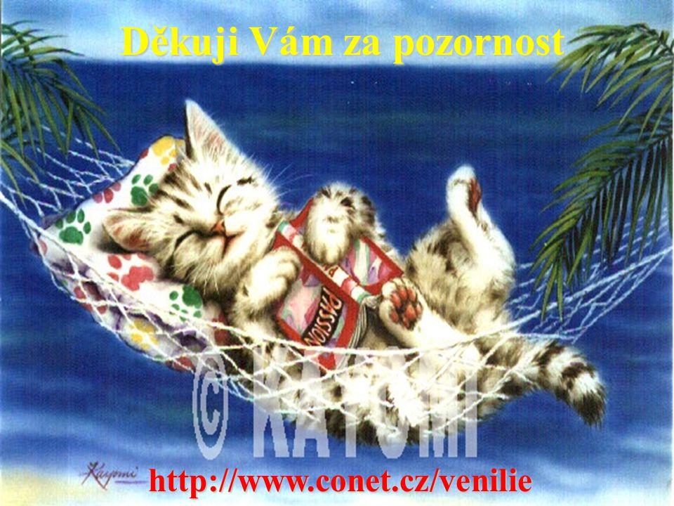 Děkuji Vám za pozornost http://www.conet.cz/venilie