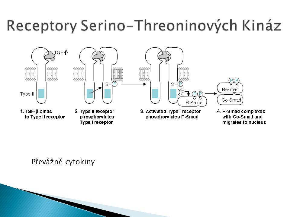 Převážně cytokiny