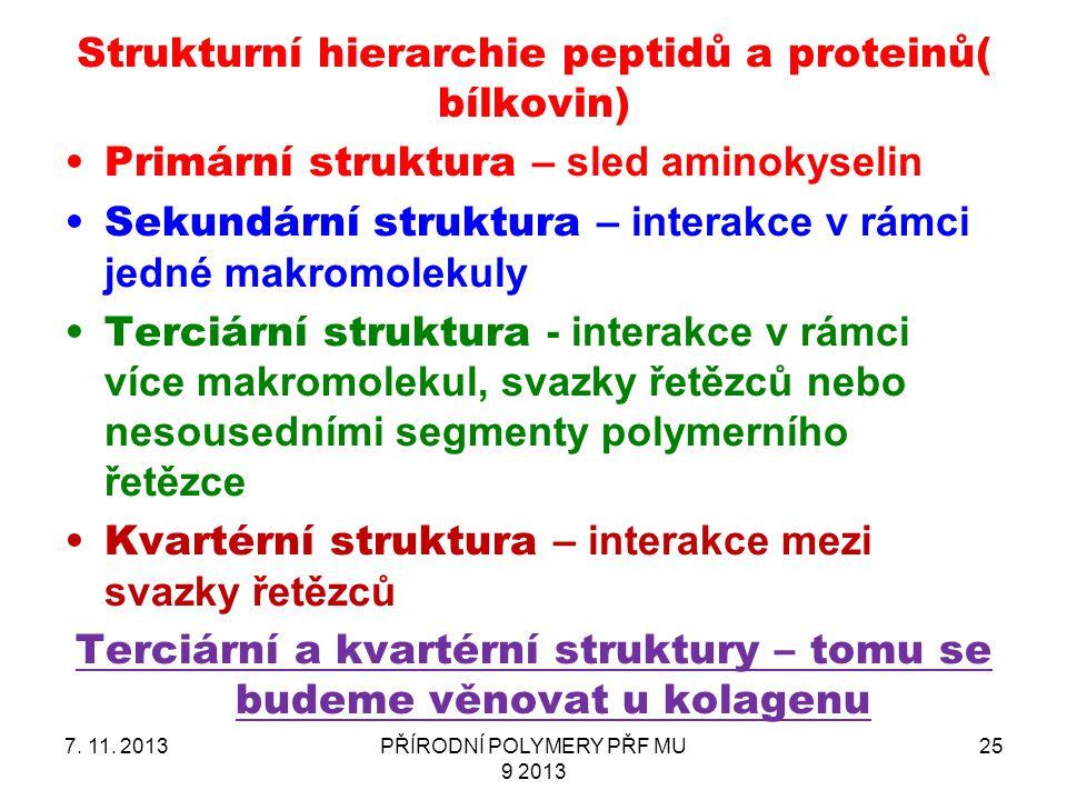 Strukturní hierarchie peptidů a proteinů( bílkovin) Primární struktura – sled aminokyselin Sekundární struktura – interakce v rámci jedné makromolekul
