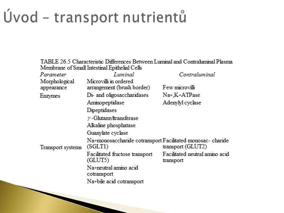  Aminokyseliny, proteiny  Sacharidy  Mastné kyseliny, cholesterol  Vláknina