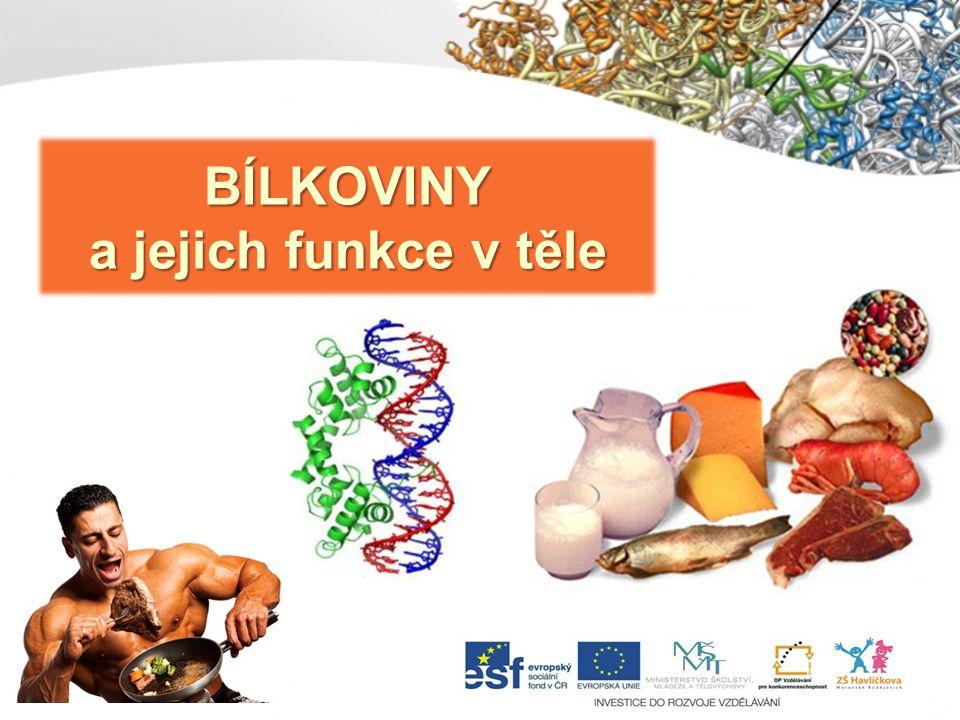 BÍLKOVINY = PROTEINY nejdůležitější přírodní látky jsou obsaženy ve svalech, kůži, vlasech,srsti a krvi živočichů (19 % hmotnosti člověka) makromolekuly bílkovin zaujímají v prostoru různé složité tvary změny struktury bílkovin jsou podstatou života bílkoviny jsou nepostradatelnou složkou potravy člověka