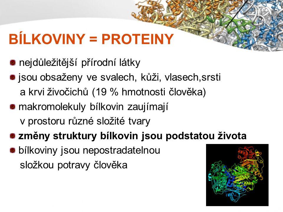 VYTVÁŘENÍ BÍLKOVIN rostliny – vytvářejí si bílkoviny z minerálních látek živočichové a člověk – musí přijímat bílkoviny jako složku své potravy, z nich si pak při trávení skládají vlastní bílkoviny