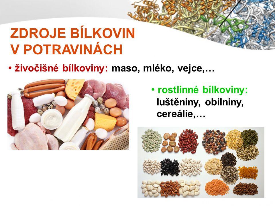 ZDROJE BÍLKOVIN V POTRAVINÁCH živočišné bílkoviny: maso, mléko, vejce,… rostlinné bílkoviny: luštěniny, obilniny, cereálie,…