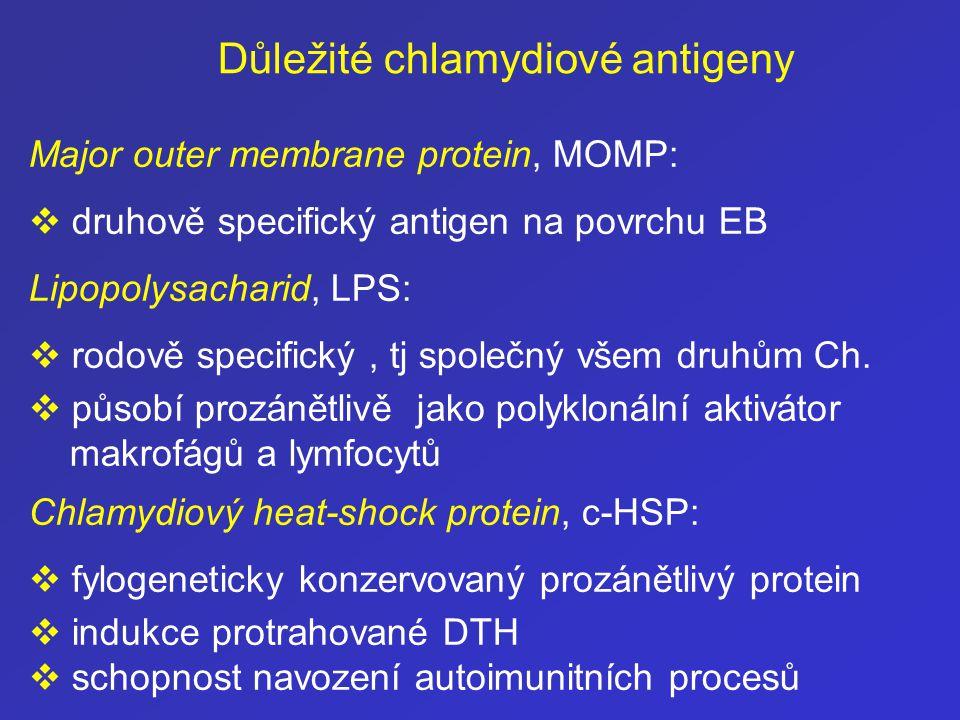 Major outer membrane protein, MOMP:  druhově specifický antigen na povrchu EB Lipopolysacharid, LPS:  rodově specifický, tj společný všem druhům Ch.