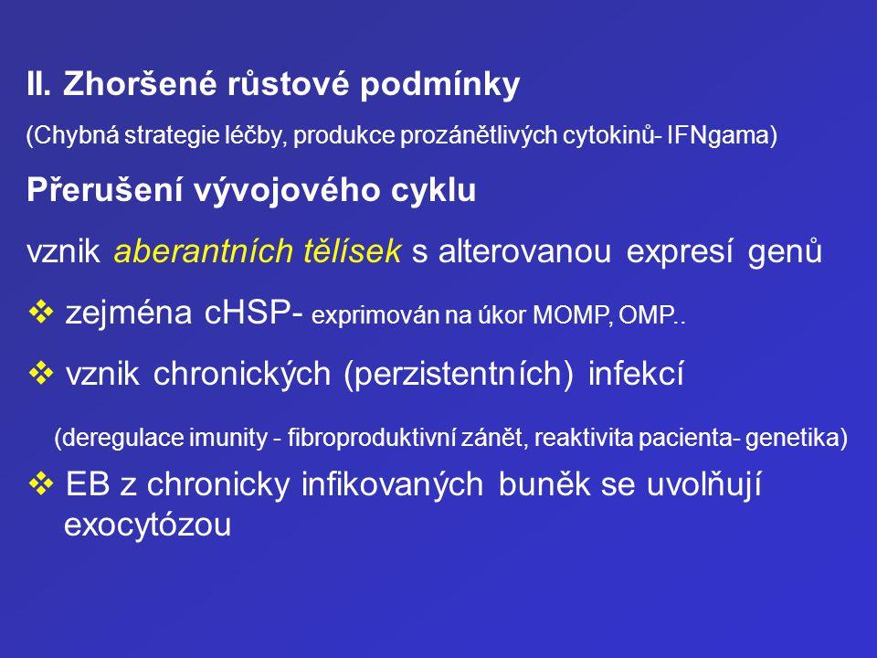 II. Zhoršené růstové podmínky (Chybná strategie léčby, produkce prozánětlivých cytokinů- IFNgama) Přerušení vývojového cyklu vznik aberantních tělísek