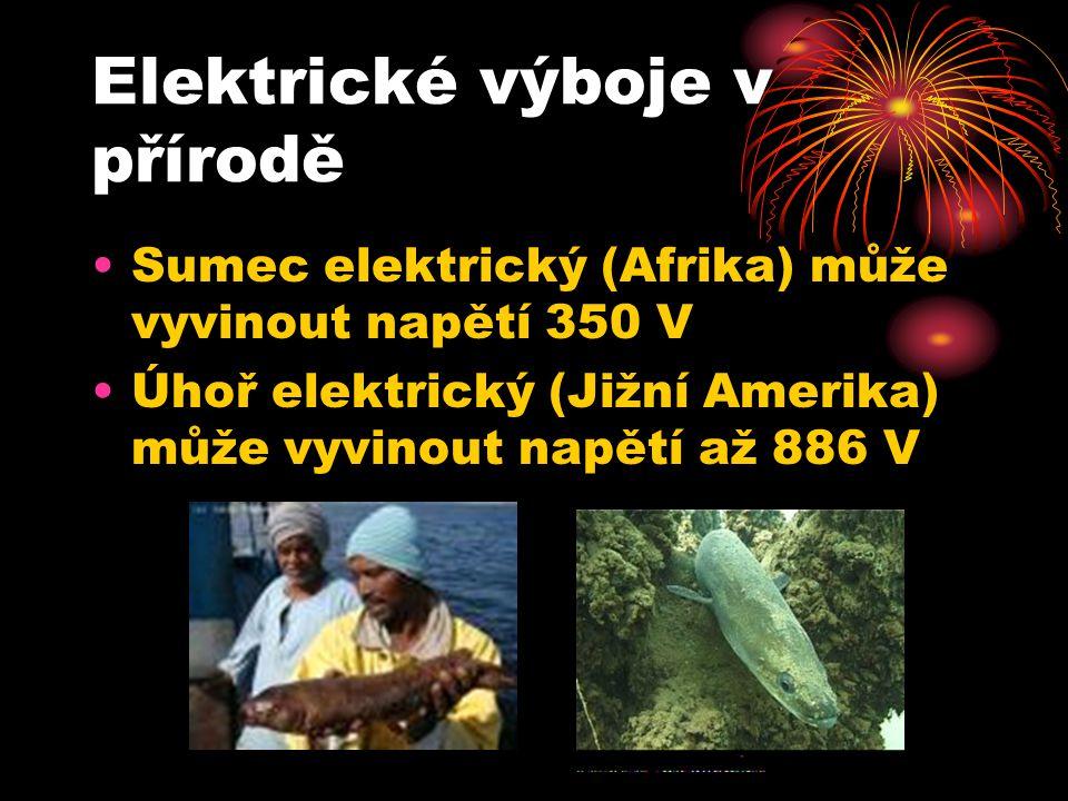 Sumec elektrický (Afrika) může vyvinout napětí 350 V Úhoř elektrický (Jižní Amerika) může vyvinout napětí až 886 V Elektrické výboje v přírodě