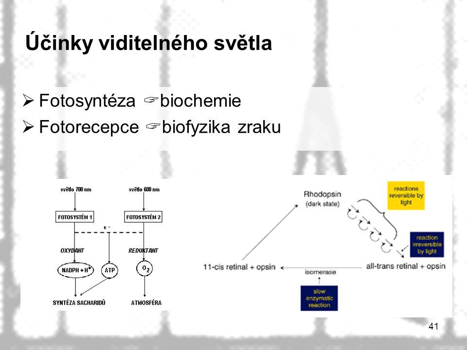 41 Účinky viditelného světla  Fotosyntéza  biochemie  Fotorecepce  biofyzika zraku