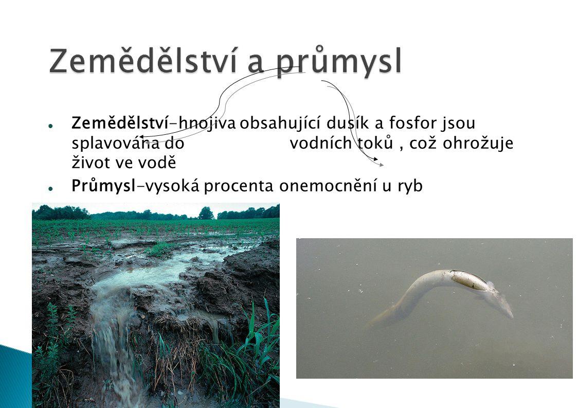 Zemědělství-hnojiva obsahující dusík a fosfor jsou splavována do vodních toků, což ohrožuje život ve vodě Průmysl-vysoká procenta onemocnění u ryb