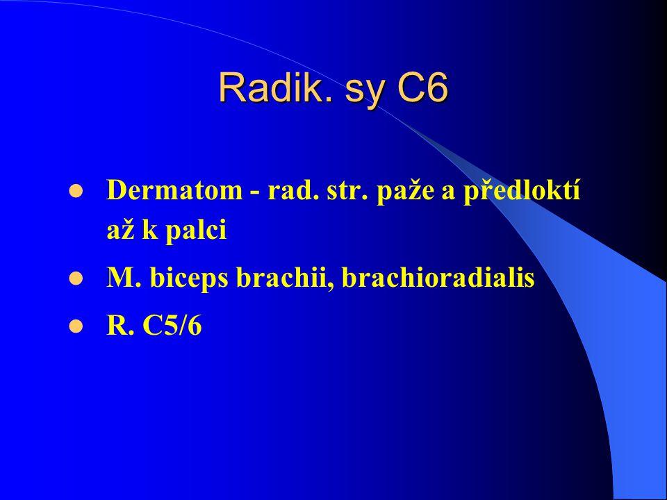 Radik.sy C6 Dermatom - rad. str. paže a předloktí až k palci M.