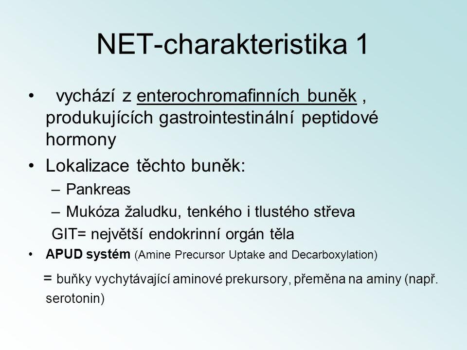 NET-charakteristika 1 vychází z enterochromafinních buněk, produkujících gastrointestinální peptidové hormony Lokalizace těchto buněk: –Pankreas –Mukó