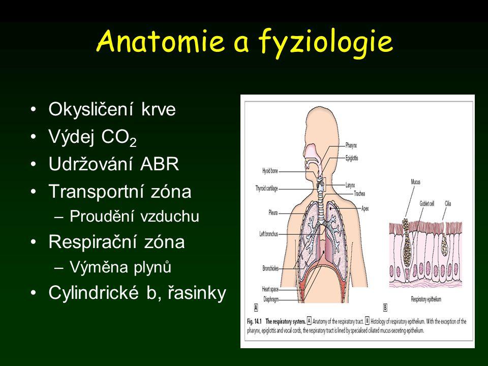 Anatomie a fyziologie Okysličení krve Výdej CO 2 Udržování ABR Transportní zóna –Proudění vzduchu Respirační zóna –Výměna plynů Cylindrické b, řasinky