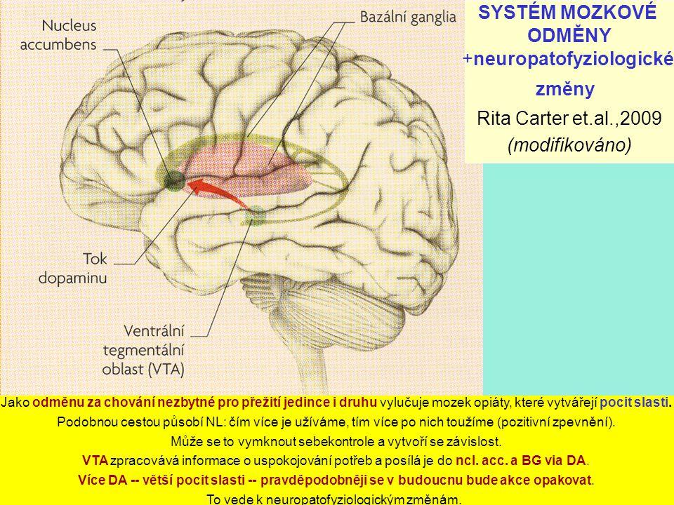 SYSTÉM MOZKOVÉ ODMĚNY +neuropatofyziologické změny Rita Carter et.al.,2009 (modifikováno) Jako odměnu za chování nezbytné pro přežití jedince i druhu vylučuje mozek opiáty, které vytvářejí pocit slasti.