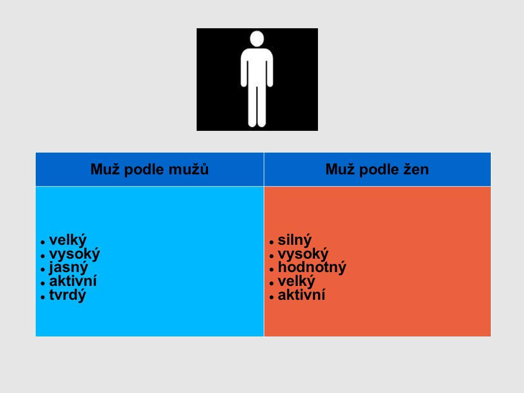 Muž podle mužůMuž podle žen velký vysoký jasný aktivní tvrdý silný vysoký hodnotný velký aktivní