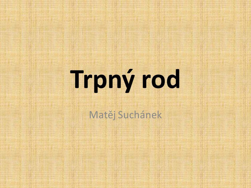 Trpný rod V češtině tedy můžeme říct tyto dvě věty: Shakespeare napsal Hamleta.