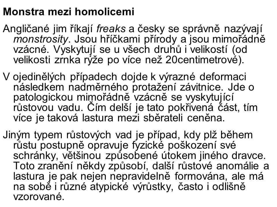 Monstra mezi homolicemi Angličané jim říkají freaks a česky se správně nazývají monstrosity. Jsou hříčkami přírody a jsou mimořádně vzácné. Vyskytují